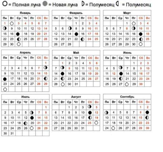 Посевной календарь на 2019 год: лунный календарь огородника по месяцам в 2019 году