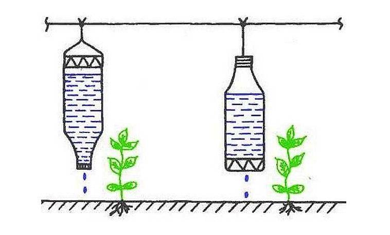 Система капельного полива на даче