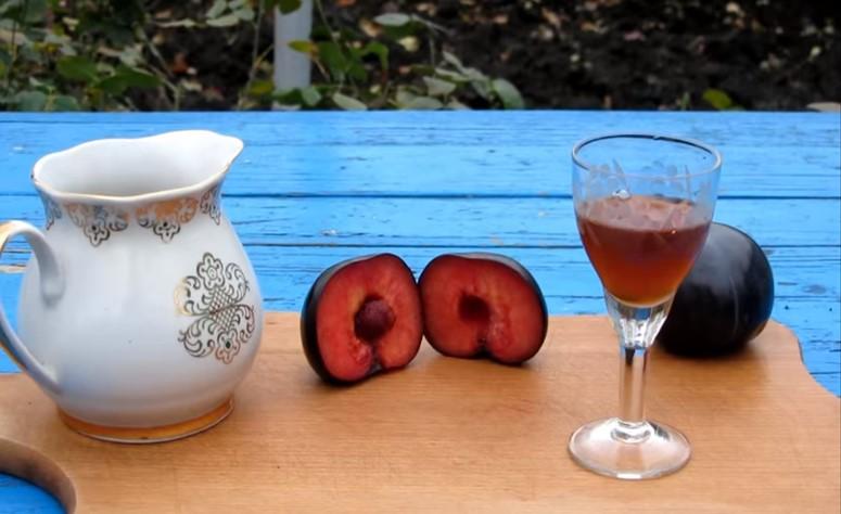 Как сделать вино из сливы в домашних условиях: 3 простых рецепта
